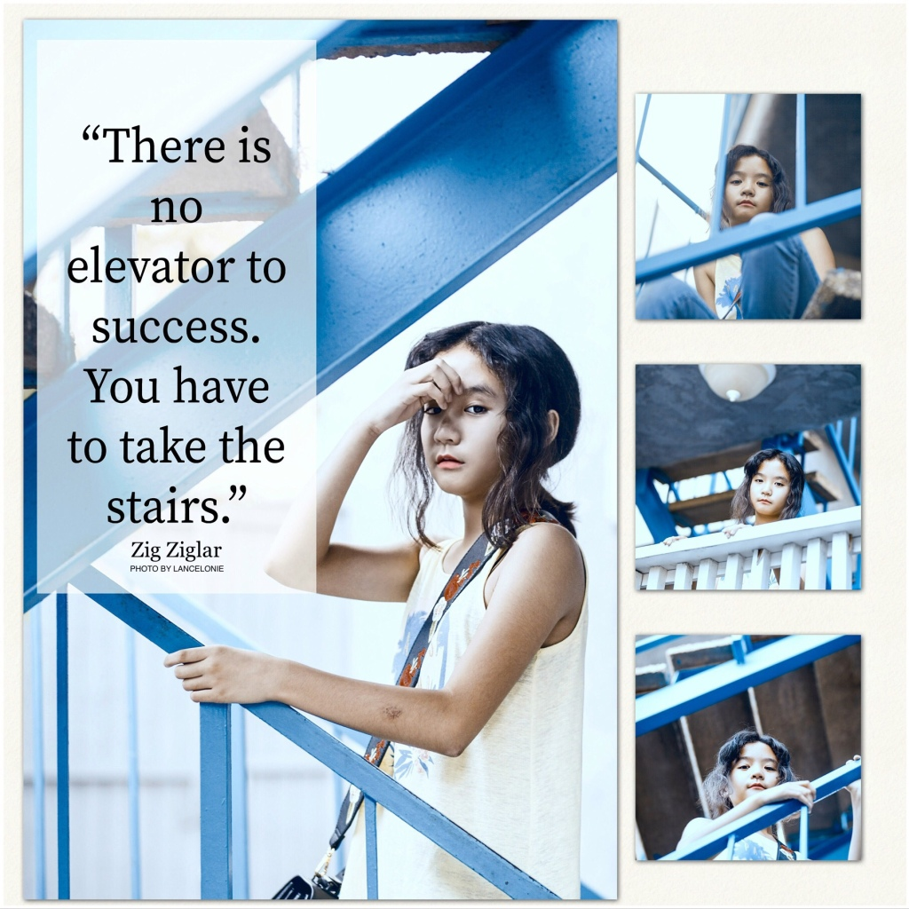 There is no elevator to success.  You have to take the stairs. Zig Ziglar quote | I Call Her Mnimi | AboutMnimi.com
